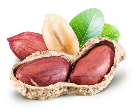 cacahuate: Cacahuetes con las hojas.