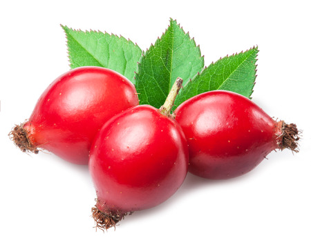 hip: Rose-hips with leaf isolated on a white background. Stock Photo