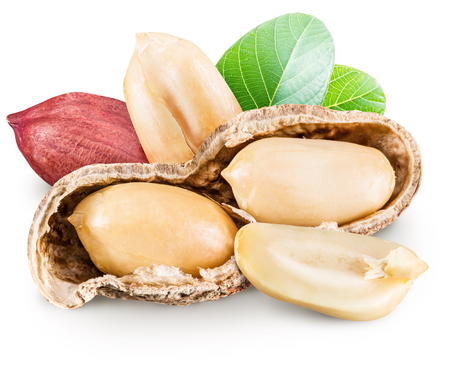 monkey nut: Peanuts with leaves.  Stock Photo