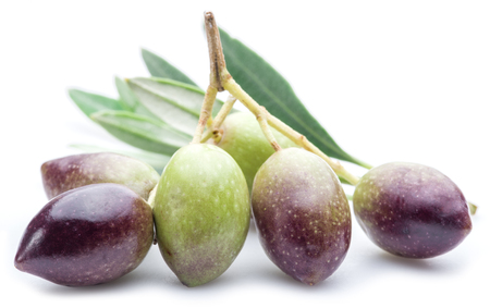 oilcan: Fresh olives with leaves on the white background.