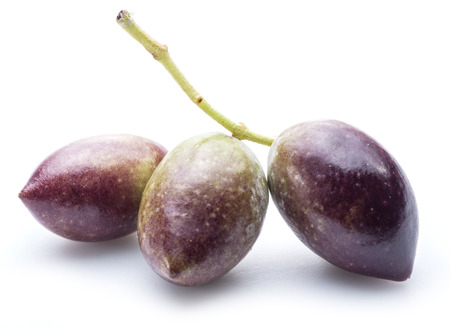oilcan: Half-ripe (semi-ripe) fresh olives with leaves on the white background.