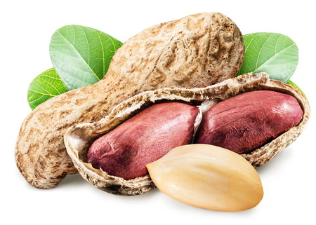 monkey nuts: Peanuts with leaves. File contains clipping paths.
