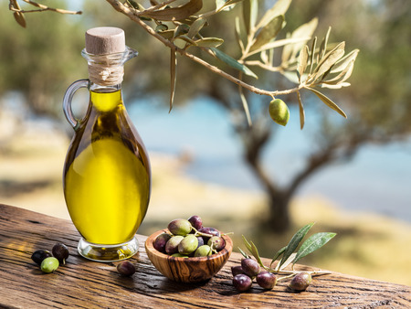 Olive oil and berries are on the wooden table under the olive tree.