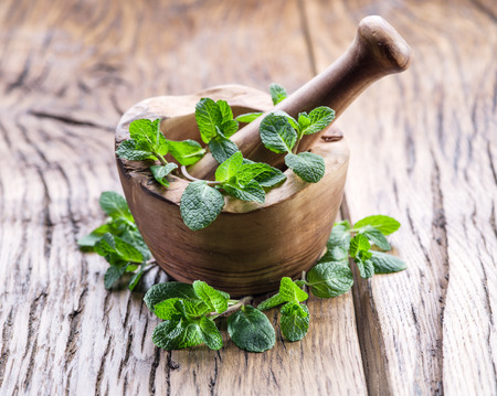 peppermint: Fresh mint, wooden mortar and pestle on the old table.