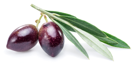 kalamata: Two fresh olives with leaves on the white background.