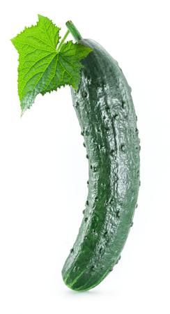cucumbers: Cucumbers on the white background.