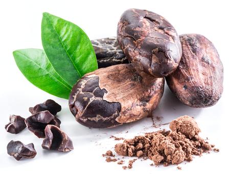 porotos: granos de cacao aislados en un fondo blanco.