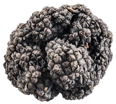 black: Black truffles.