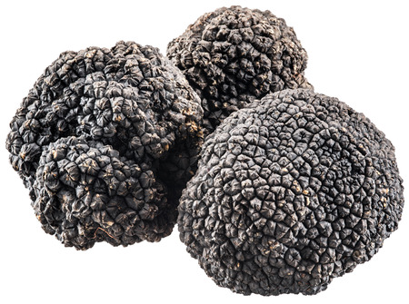 contains: Black truffles. File contains clipping paths.