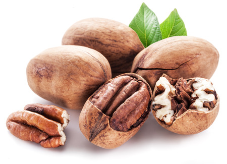 hickory nuts: Pecan nuts isolated on a white background.