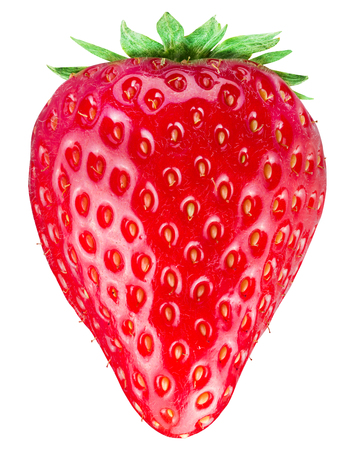 clipping: Strawberry on the white background. File contains clipping paths.
