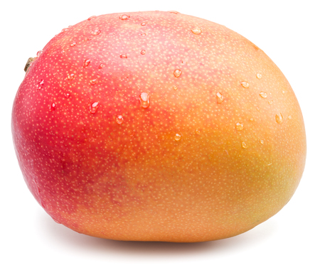 fruit background: Mango fruit with water drops. Isolated on a white background.