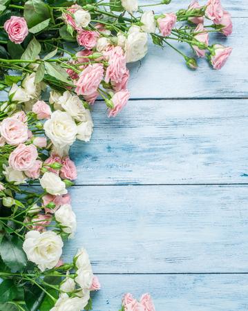 Delicate rose fresche sui precedenti di legno blu.