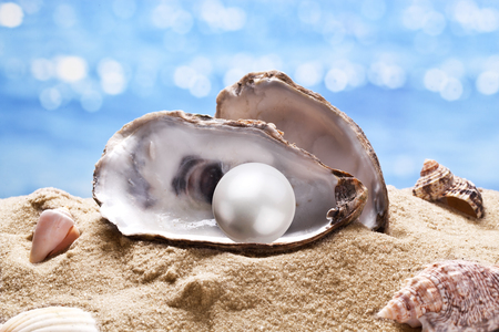 Shell with a pearl on a sea sand.