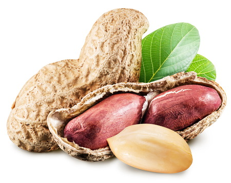 monkey nut: Peanuts with leaves. File contains clipping paths.