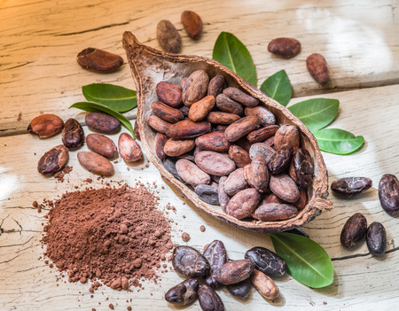 cocoa fruit: Cocao powder and cocao beans on the wooden table.