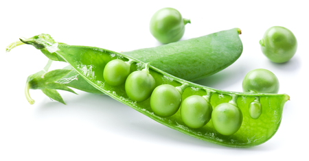 leguminous: Fresh peas are contained within a pod isolated on a white background.