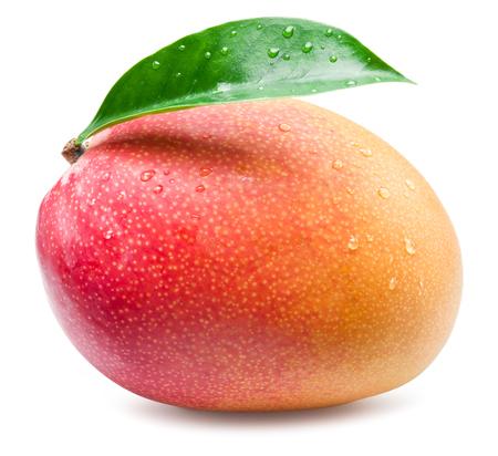 frutas tropicales: fruta del mango con la hoja aislada en el fondo blanco. Foto de archivo