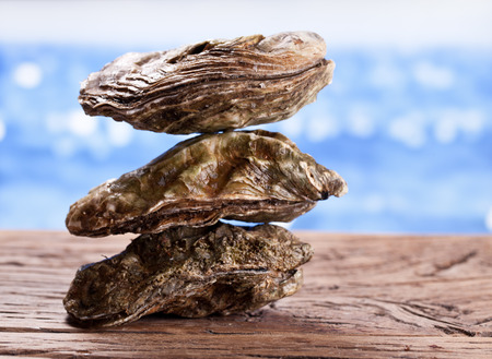 Raw oyster on wood. Sea at the background. Stock Photo