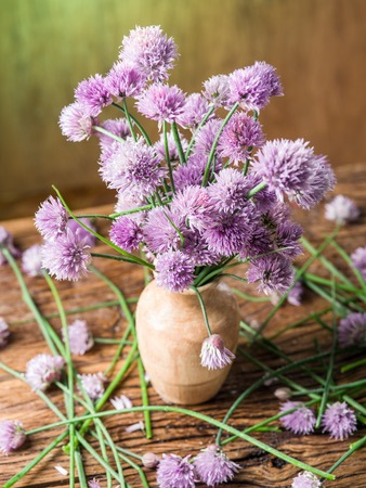 flowers in vase: Bouquet of onion (chives) flowers in the vase on the wooden table.