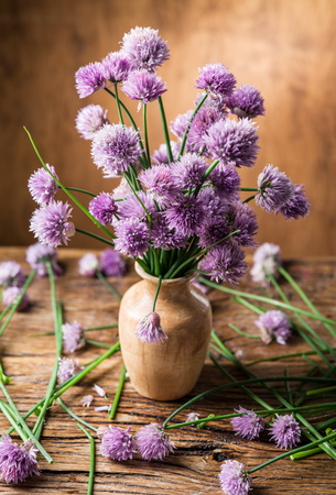 onion flowers: Bouquet of onion (chives) flowers in the vase on the wooden table.