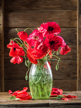 flowers in vase: Bouquet of poppy flowers in the vase on the wooden table.