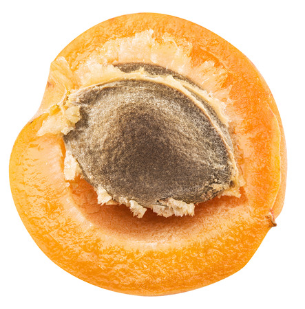 outs: Ripe apricots cross section with apricot seed in it. Stock Photo