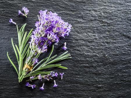 grafit: Bukiet kwiatów lawendy Lavandula lub na pokładzie grafitu. Zdjęcie Seryjne