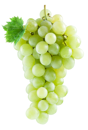 vinery: Bunch of white grapes. File contains clipping paths. Stock Photo
