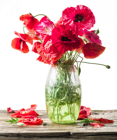 Bouquet of poppy flowers in the vase on the wooden table. White background.