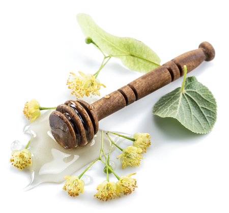 Wooden dipper lays in honey puddle and linden flowers. Stock Photo