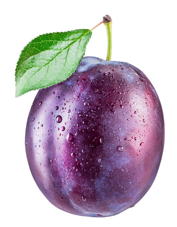 Plum with water drops. File contains clipping path.