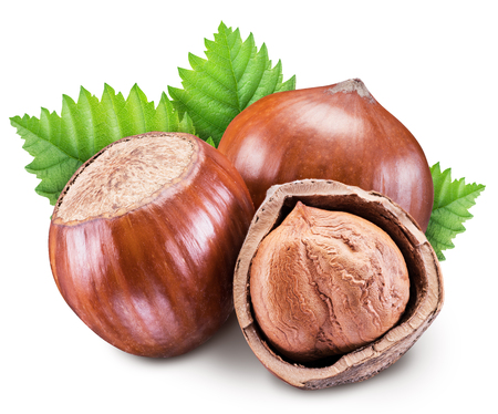 Hazelnuts, kernel of hazelnut and green leaves. Stock Photo