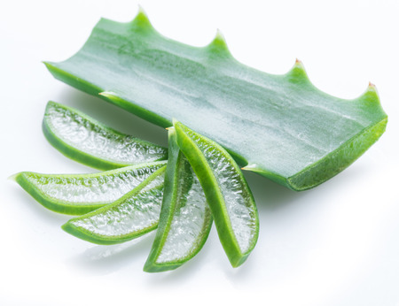 Aloe or Aloe vera fresh leaves and slices on white background. Stock Photo