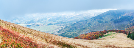 Panorama of colorful trees in the autumn mountains.