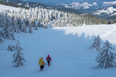 Winter hiking. Tourists are hiking in the snow-covered mountains. Beautiful winter landscape in the mountains. Imagens