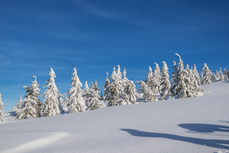 Beautiful winter landscape in the mountains. Tops of mountains covered with snow and green firs at the foothills. Stock Photo