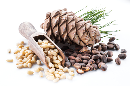 Pine nut cone and pine nuts on the white background. Organic food. Archivio Fotografico