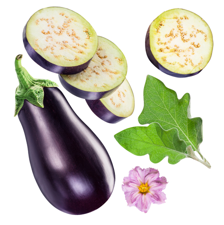 Aubergine or eggplant, aubergine flower, leaves and three slices. File contains clipping path for each item.