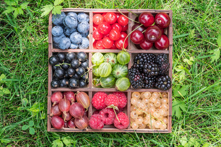 Summer berries in wooden box on the green grass. Top view. Imagens