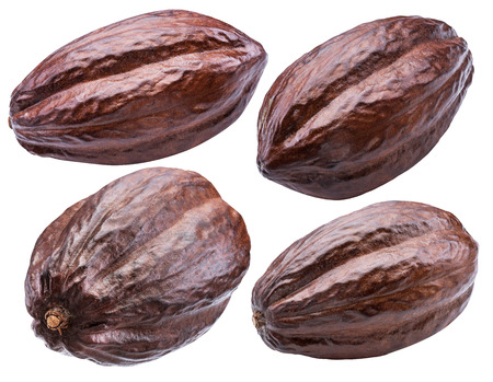 Cocoa pods isolated on a white background. Clipping path. Reklamní fotografie - 119386756