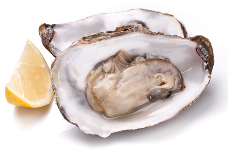 Raw oyster and lemon isolated on a whte background. Imagens