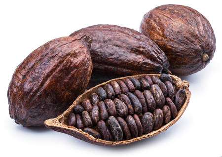Cocoa pods and cocoa beans isolated on a white