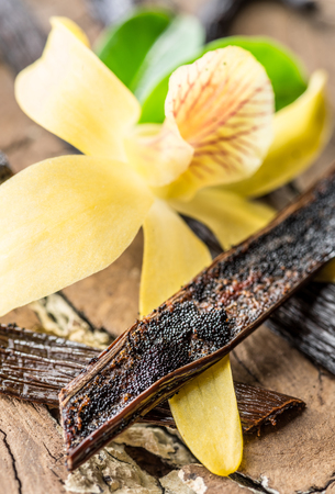 Dried vanilla fruits and vanilla orchid on wooden table. Close-up.