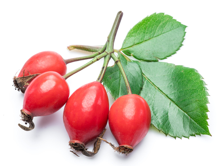 Rose-hips with rose leaves isolated on a white background.