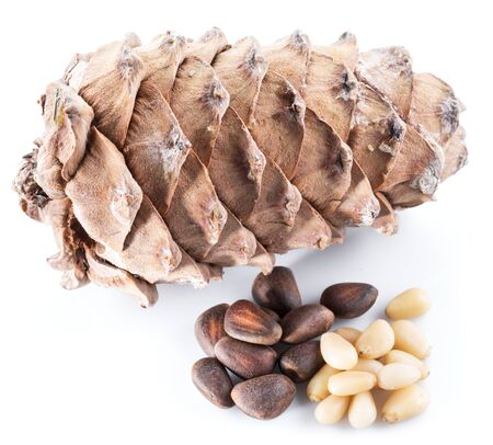 Pine nut cone and pine nuts on the white