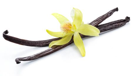 Dried vanilla fruits and orchid vanilla flower isolated on white background. 스톡 콘텐츠