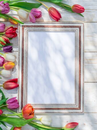 Colorful tulips around wooden frame in spring sunlights. Spring background. Banco de Imagens