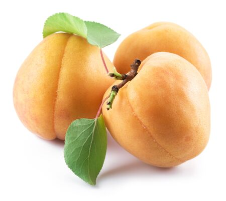 Ripe apricots with leaves isolated on the white background. Banco de Imagens