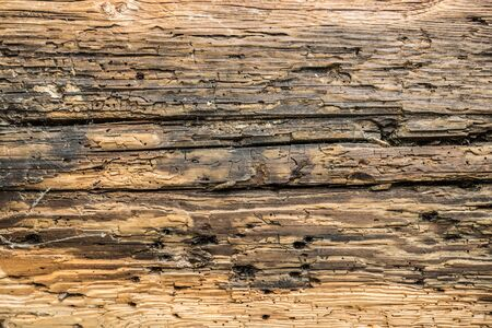 Wooden background. Picture of old damaged wooden texture.